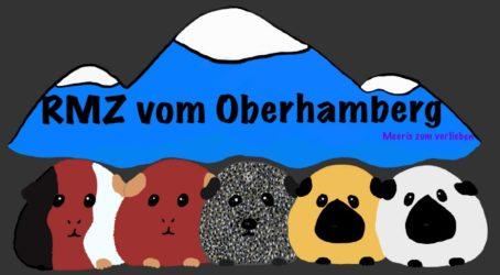 Meerschweinchen vom Oberhamberg